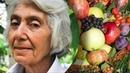 Марва Оганян Практика здорового питания