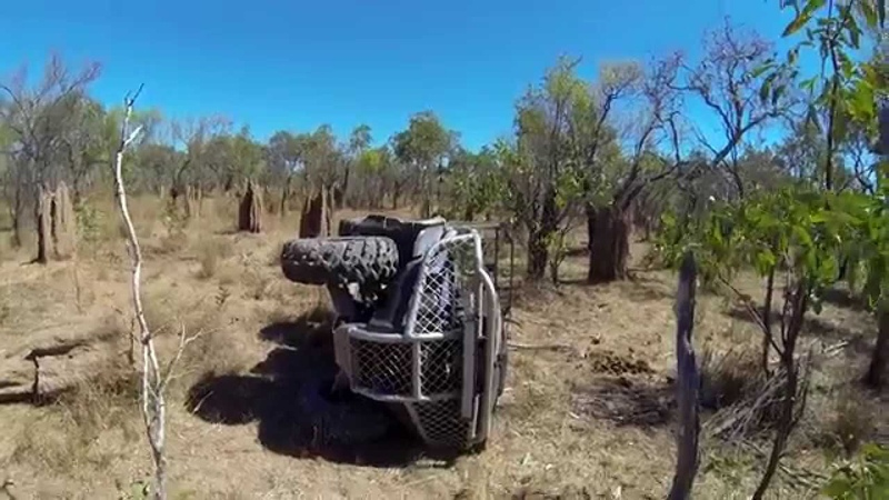 Hogs Dogs Quads 3 extended trailer!!- Pig Hunting Wild Boar with Dogs Pigging Dogging hog hunt