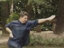 Kung Fu Choy Li Fut - le Kung Fu de Dr Wong(Sifu Pedro Rico)