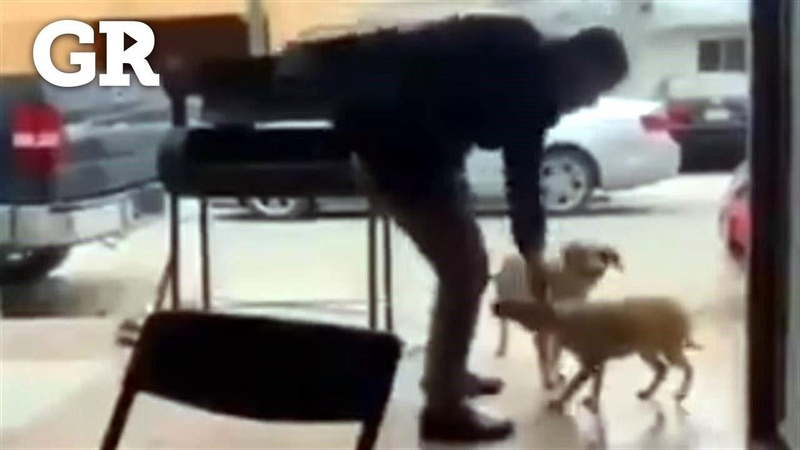Apuñala a perro y causa repudio en redes