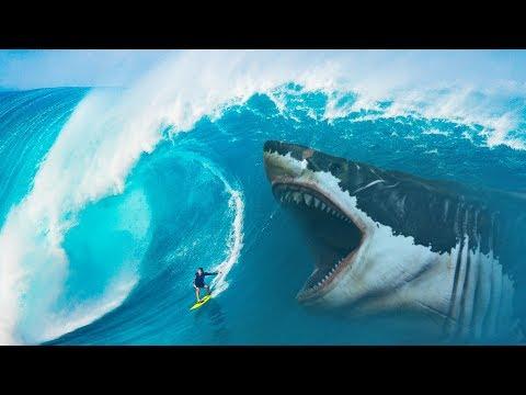 Что Если бы Акула Мегалодон не Вымерла