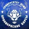 Кронверкские барсы   Университет ИТМО