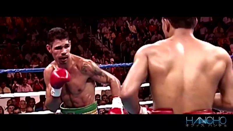 Top 10 Greatest Miguel Cotto Knockouts HD_60FPS
