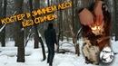 Как разжечь костер зимой огнивом , ПВД, жареная картошка на костре, solo bushcraft