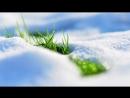 ЛЮБЛЮ Новинка 2018 Очень красивый дуэт Красивая и Душевная песня