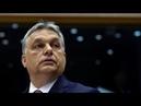 Araber Clans Bildung Viktor Orbán US Armee Israel Wladimir Putin
