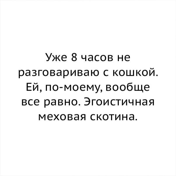 https://sun4-2.userapi.com/c543106/v543106339/34a04/klmt_U9MnIo.jpg