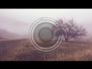 Martijn Ten Velden - I Wish You Would (Official Music Video) || клубные видеоклипы