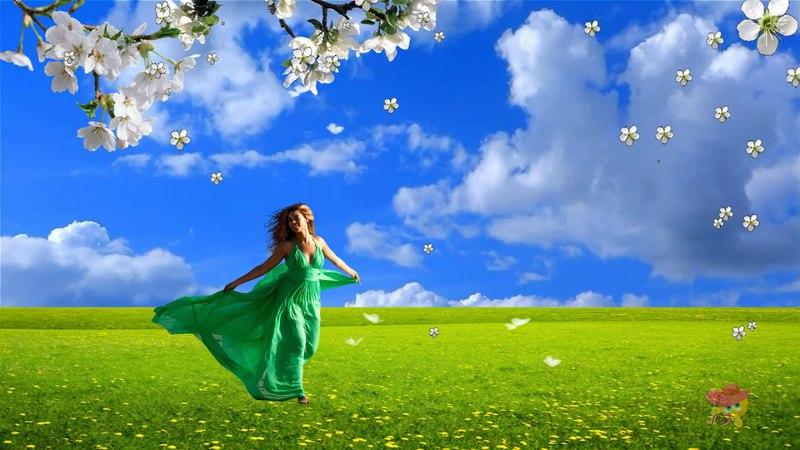 Прекрасная весна Красивый бесплатный футаж для ваших видеоработ