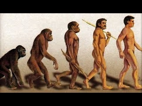 Darwin's Theory Of Evolution Discovery History Science Documentary