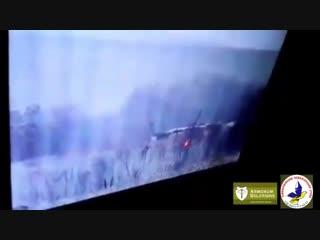 Бойцы ВСУ поздравили малоросов с Новым Годом