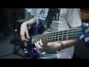 Plini Wombat Astronaut Beyond The Burrow Bass Cover