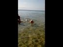 очередной заплыв