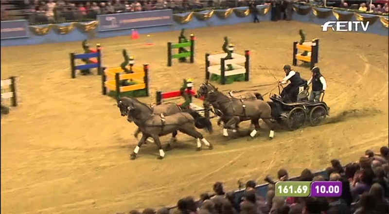 FEI World Cup Driving 201213 London Olympia - Boyd Exell 1st Place