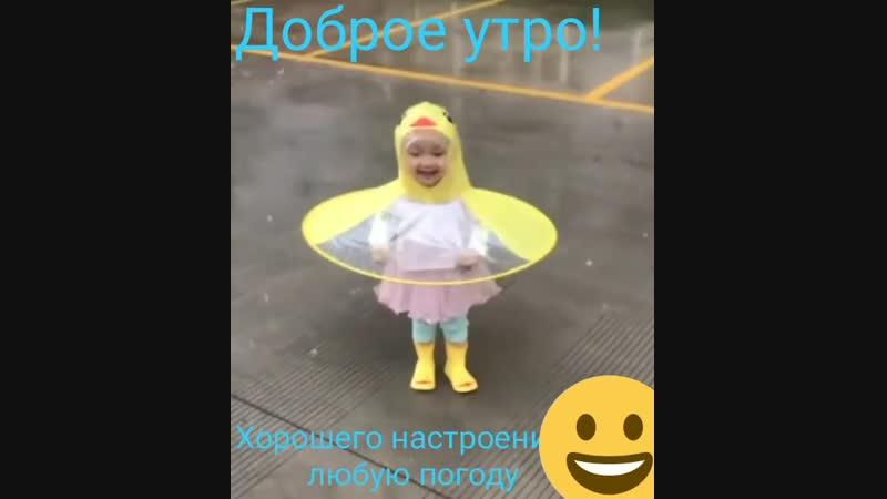 Дождевик