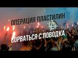 Доброфест 2018 ОПЕРАЦИЯ ПЛАСТИЛИН Сорваться с поводка