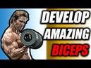 3 Exercises To Develop Amazing Biceps 💪