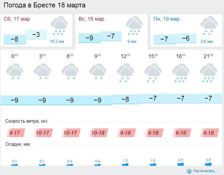 Опять зима? Резкое похолодание в Бресте: ветер, мороз до минус 20, сильный снег, гололедица