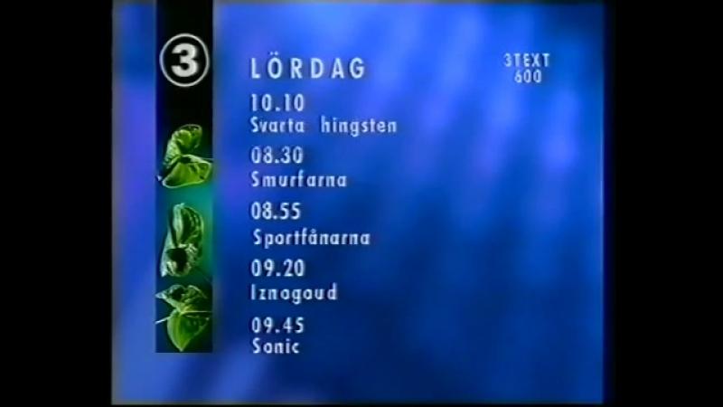 Окончание эфира (TV3 [Швеция], 19.01.1996)