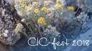 Фестиваль CIC - 2018