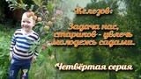 Задача нас, стариков - увлечь молодежь садами - Железов В.К.