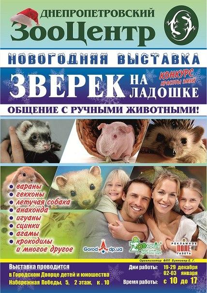 ЗооЦентр Городского Дворца