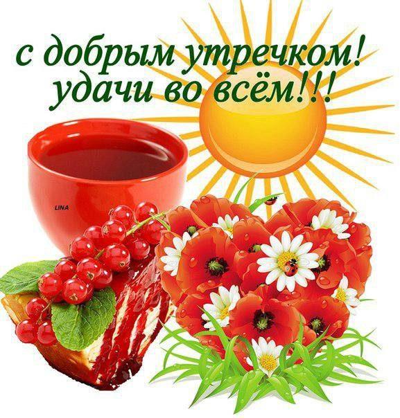 http://cs616626.vk.me/v616626494/1d853/P9s3CDFFE2A.jpg