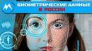 Биометрические данные в России Манипуляция людьми Тотальный контроль