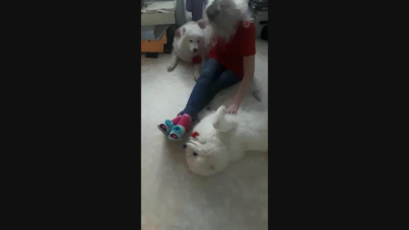 Кира и Бетти))