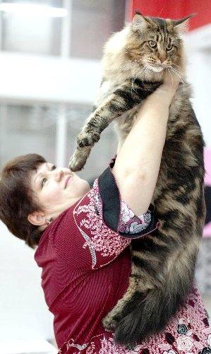 Евсеенко Оксана и кот Кабальеро