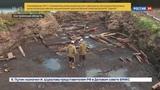 Новости на Россия 24 На острове Вежи в Костромской области обнаружили уникальные археологические находки