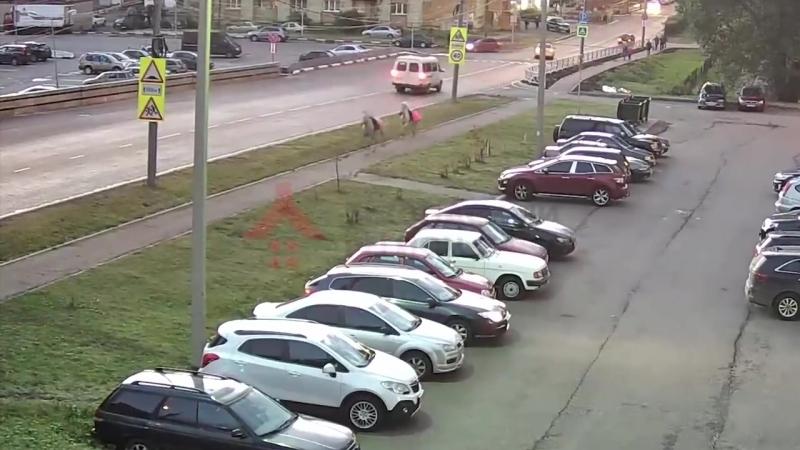 Лошади на московском проспекте