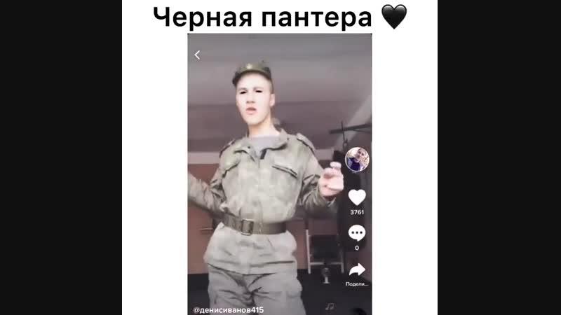 ЧЁРНАЯ ПАНТЕРА В ЧЁРНОМ ПАНАМЕРО