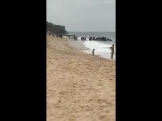 Spanien - Tarifa - Schlauchboot voller Illegaler landet am Strand - Alle Illegalen tauchen unter