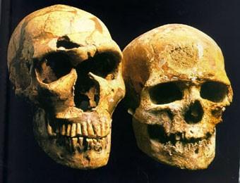 Неандертальцы никогда не были родственниками человека
