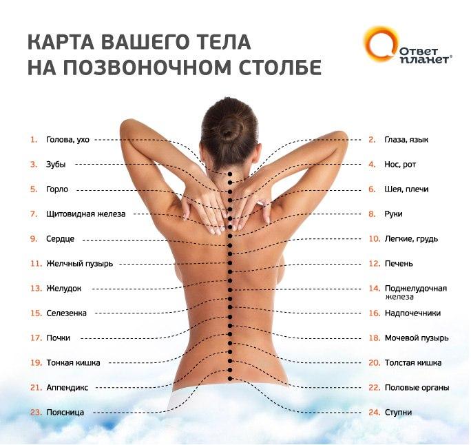 Справочник По Физиотерапии Боголюбов Скачать Бесплатно
