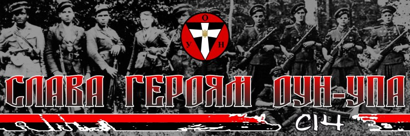 """Атаку снежками на """"регионалок"""" посчитали """"покушением на убийство"""", а избиение Чорновол всего лишь """"хулиганством"""", - Власенко - Цензор.НЕТ 5711"""