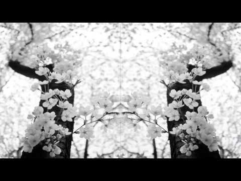 Ń Ҝ Ø Ή ∀ - Divergents