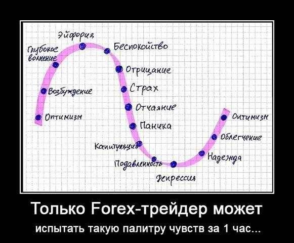 Работа на бирже форекс