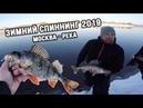 Зимний спиннинг на Москве реке. В поисках трофейной рыбы!