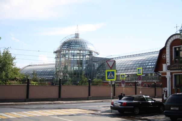 Кусочек Московского Зоопарка.  1 июля 2018