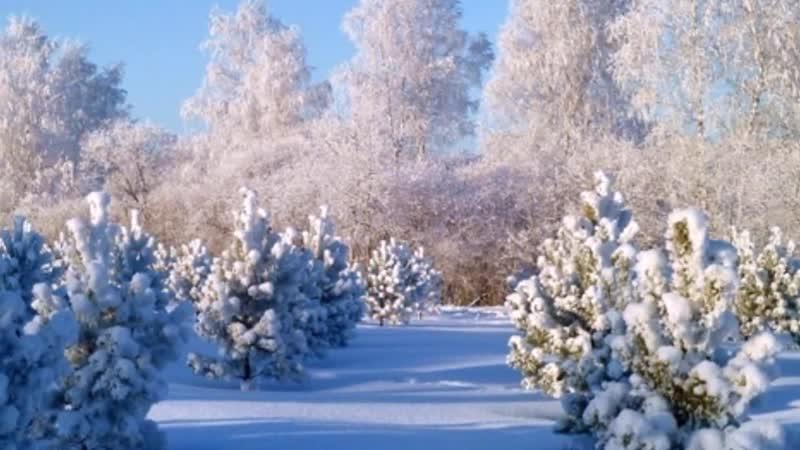 Фото - Фильм (114) - Зимняя Сказка