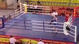 I Всероссийский турнир по боксу..27/04