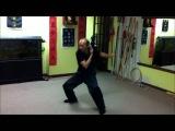 This is Pak Mei Master Simon Lui Long Chun