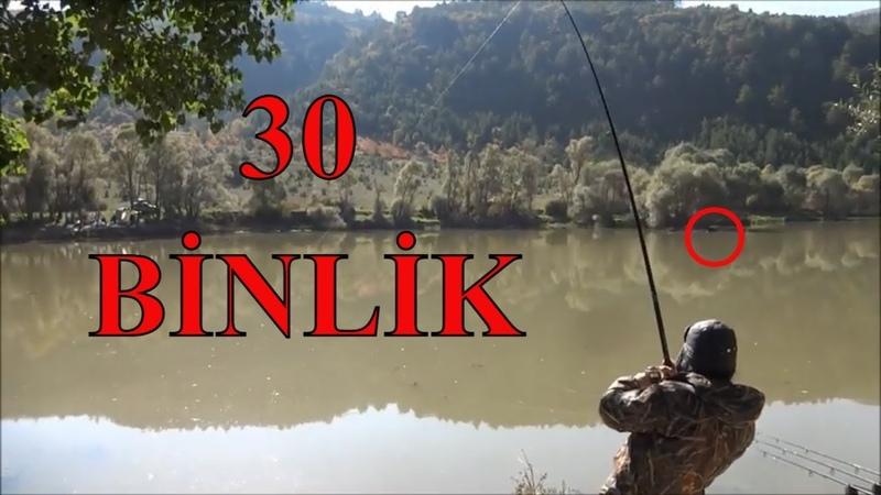 SİLİNEN VİDEO - Trofe Sazan Avcıları Trophy Carp Fishermen Part-2 TURKEY