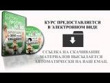 Пошаговая инструкция по заработку от 100 тысяч рублей в месяц