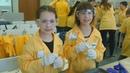 Научные смены в Тобольске