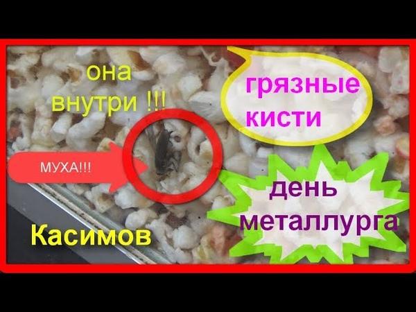 город Касимов день металлурга 14 июля 2018 \ муха в попкорне