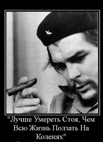 Серж Шатилов, 14 января 1995, Санкт-Петербург, id64450417