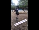 Парень катается на одноколесном велосипеде (из истории пивоварни Семейный бизнес на Инстаграме)